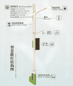 5m Community Smart Street Light